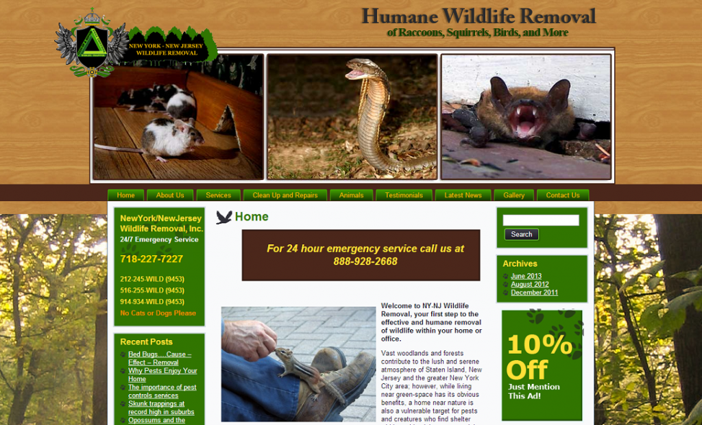 Wildlife Removal Middlesex County